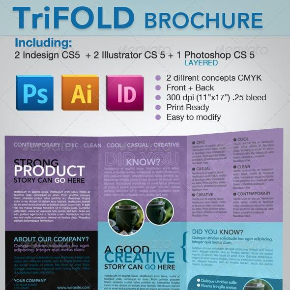 Trifold Brochure - Indesign, Illustrator & photosh