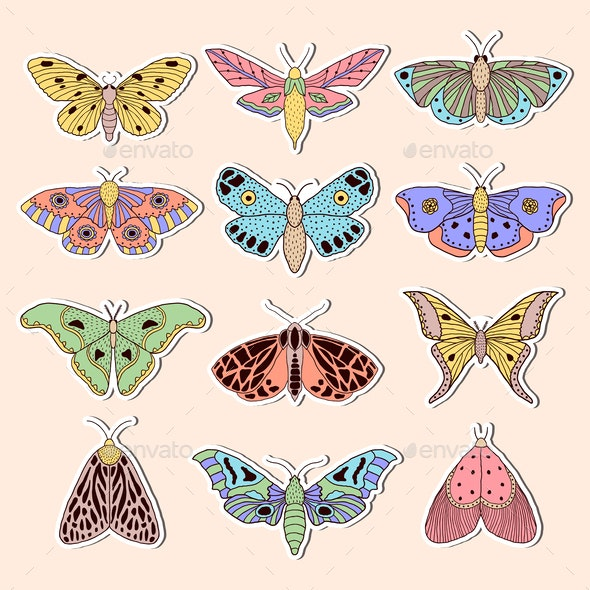 Stickers with Butterflies - Miscellaneous Vectors