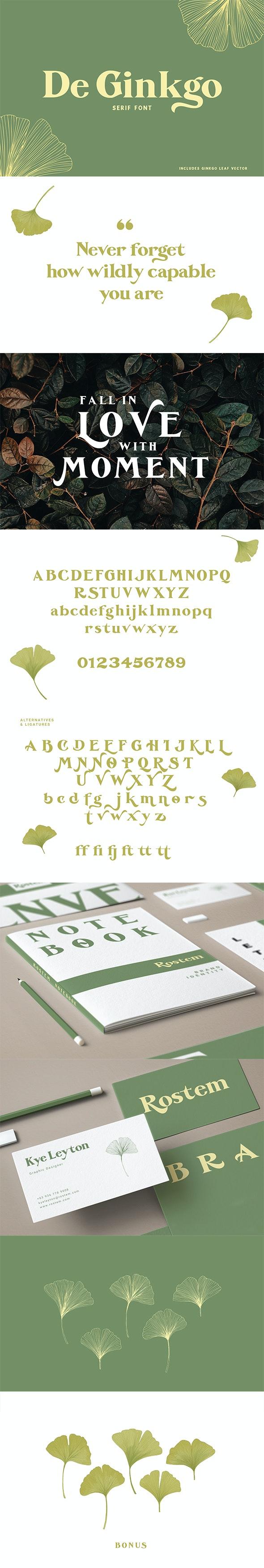 De Ginkgo font - Serif Fonts