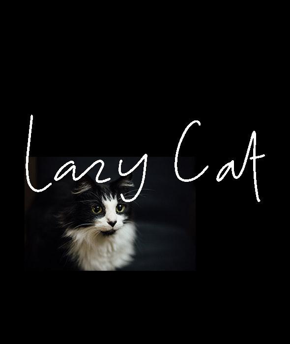 Lazy Cat - Hand-writing Script