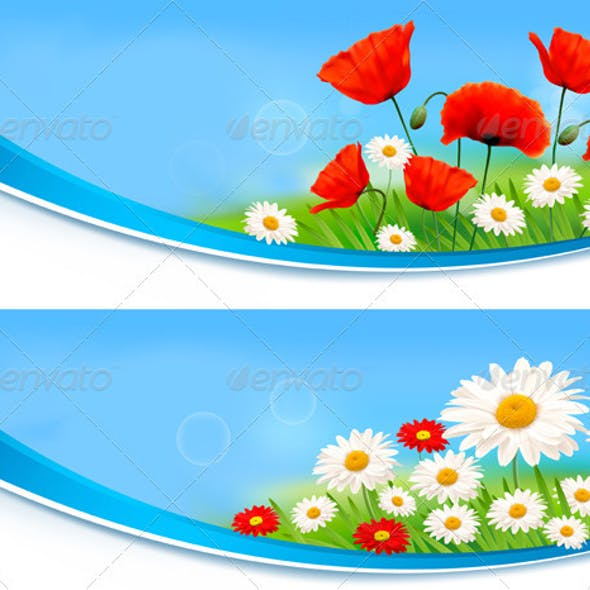 Beautiful banners with daisies and poppies.