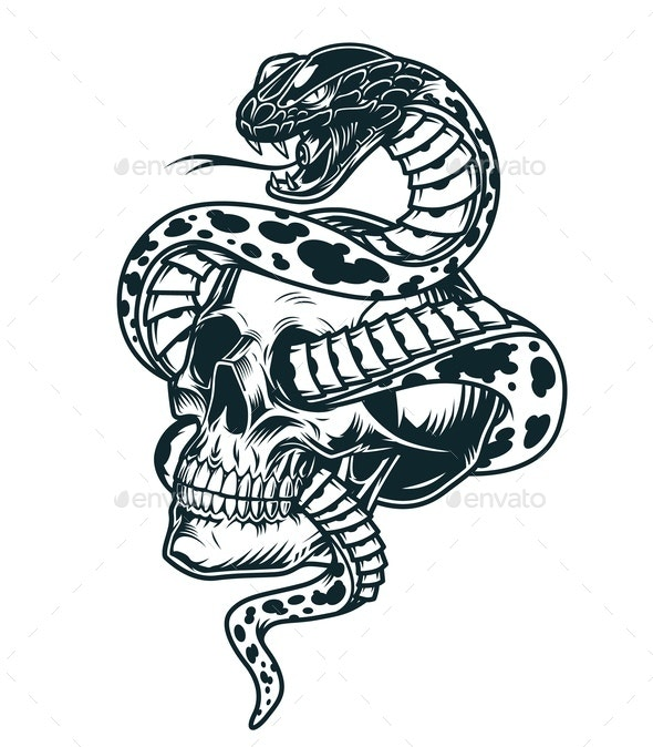 Snake Skull - Miscellaneous Vectors