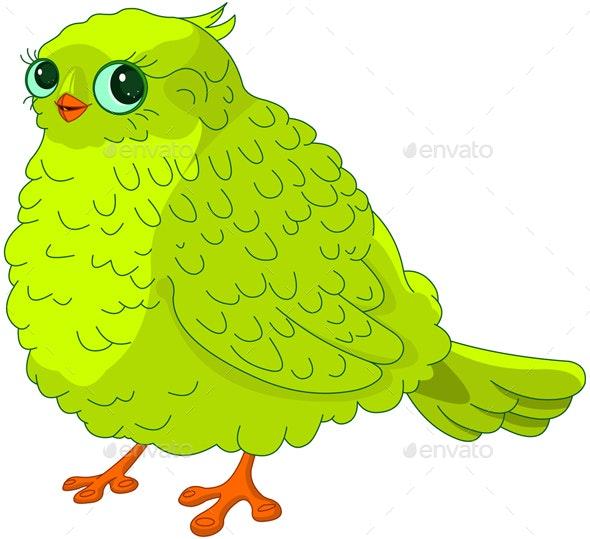 Green Bird - Animals Characters