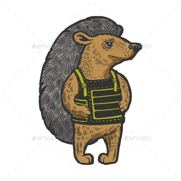 Hedgehog in Body Armor Color Sketch Engraving - Animals Characters