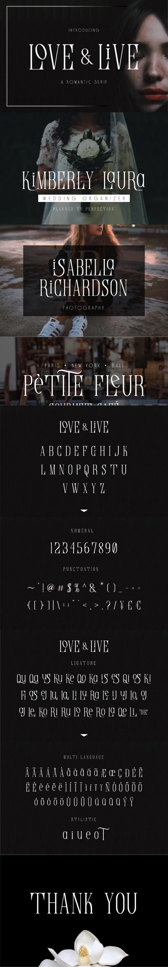 Love & Life Romantic Serif Font - Serif Fonts
