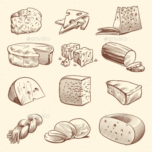 Hand Drawn Cheese Various Types of Cheeses - Food Objects