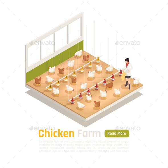 Chicken Farm Isometric Composition - Food Objects
