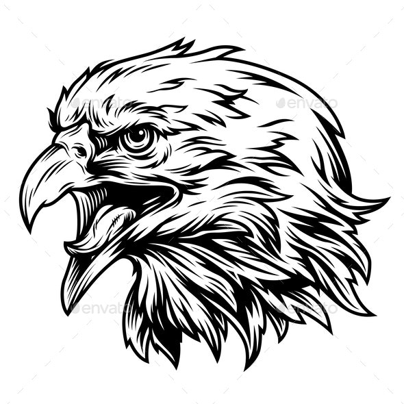 Vintage Eagle Head Side View Concept - Animals Characters