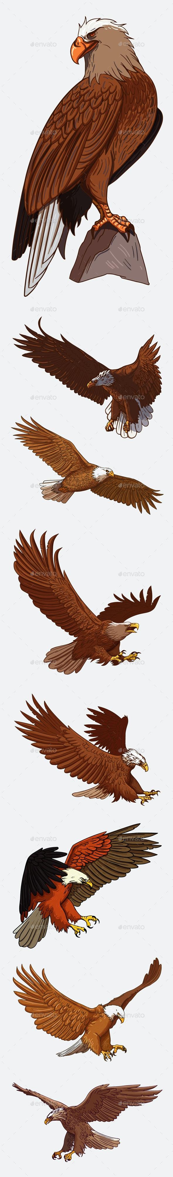 Eagle Bundle - Animals Characters