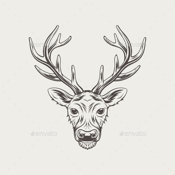 Deer Head Isolated on White Background - Animals Characters