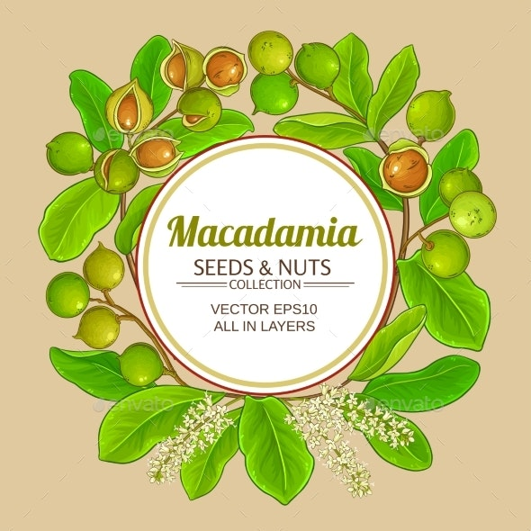 Macadamia Branches Vector Frame - Food Objects