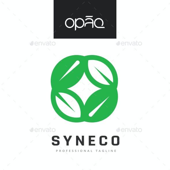 Ecology Synergy Logo