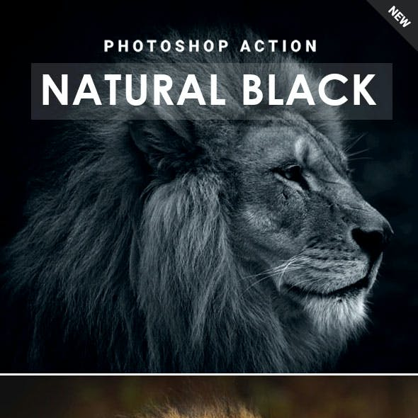 Natural Black Photoshop Action