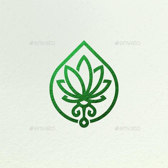 Melt Hemp Marijuana Oil Logo Cannabis Leaf Drops