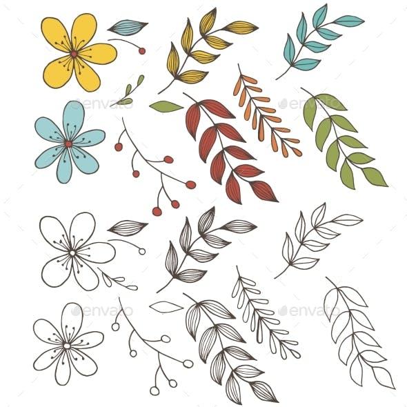 Set Hand Draw Botanic Floral Elements with Leaf