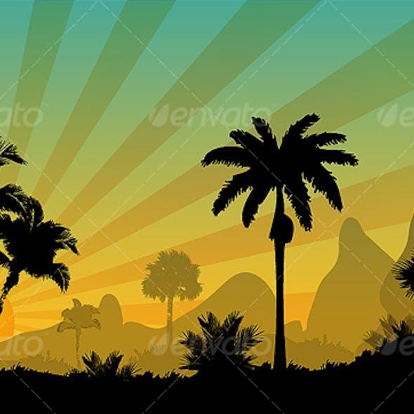 Palm trees of sunny desert
