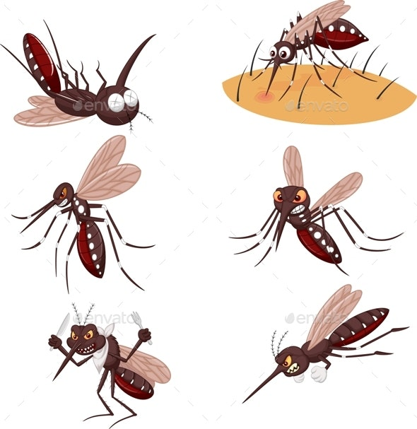 Mosquitoes Cartoon - Animals Characters