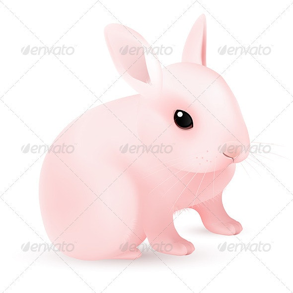 Pink Easter Bunny - Animals Characters