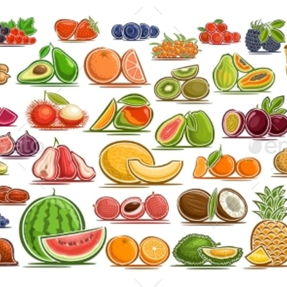 Vector Set of Fresh Fruits and Berries