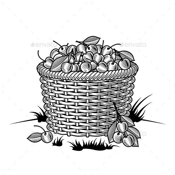 Retro Basket of Cherries Black and White - Food Objects