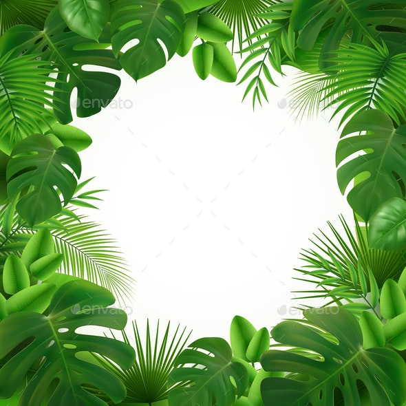 Tropical Leaves Frame Composition - Flowers & Plants Nature