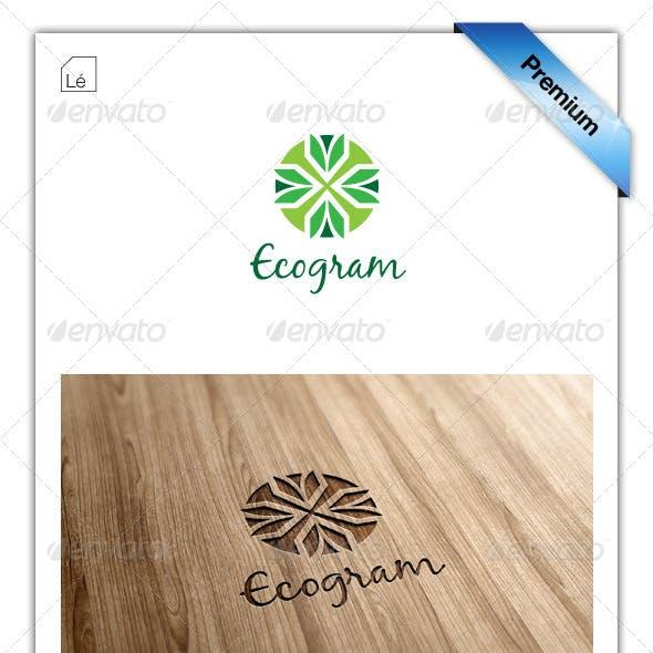 Abstract Eco Organic Logo