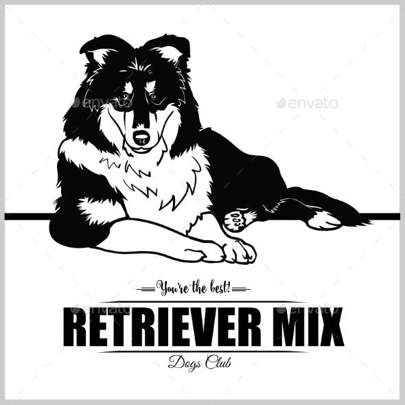 Retriever Mix Dog - Animals Characters