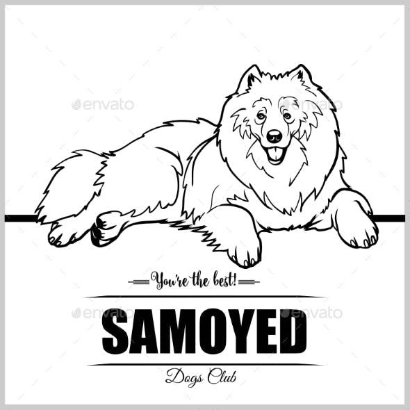 Samoyed Dog - Vector Illustration for T-Shirt