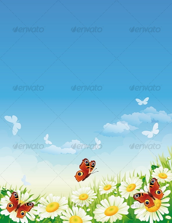 butterfly and flowers - Seasons Nature