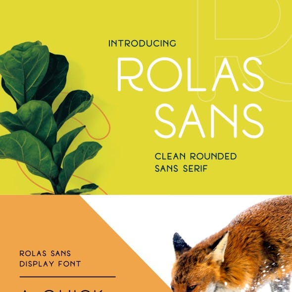 Rolas Sans Display Font