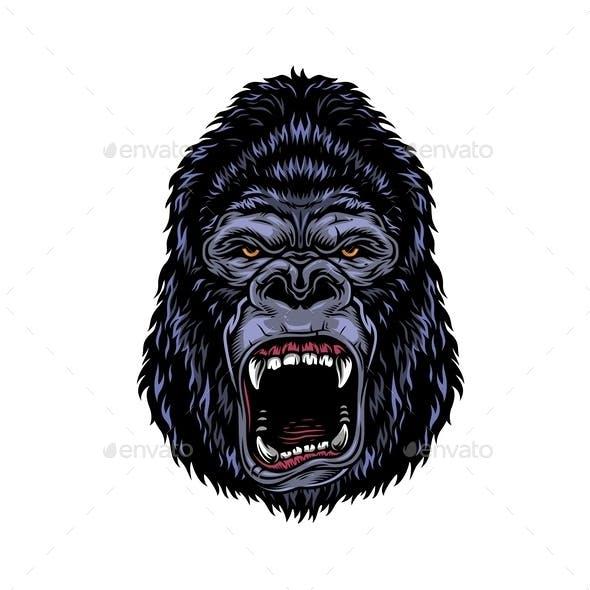 Colorful Gorilla Head