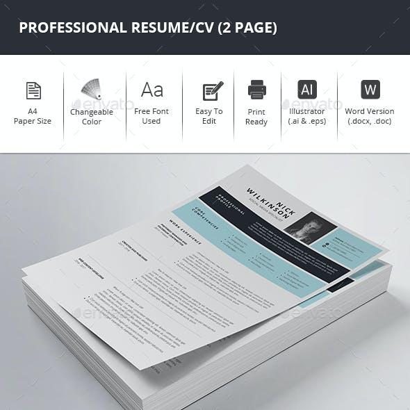 Professional Resume/CV (2 Page)