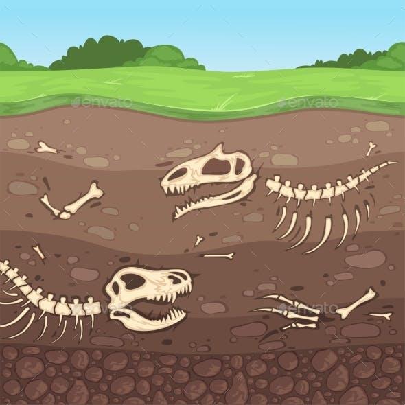 Archaeology Bones Underground Dinosaur Bones