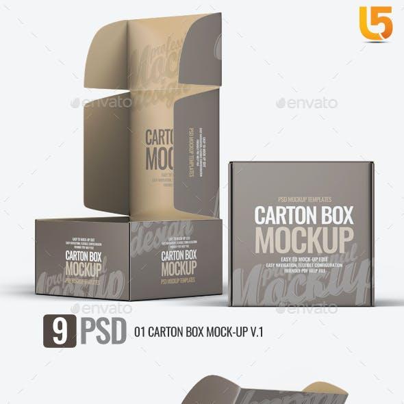Carton Box Mock-Up v.1