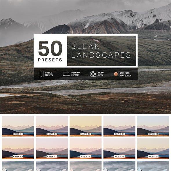 50 Bleak Landscapes Lightroom Presets and LUTs
