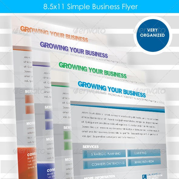 Simple Business Flyer 8.5x11