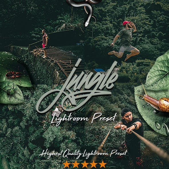 Jungle Moody PRO Preset
