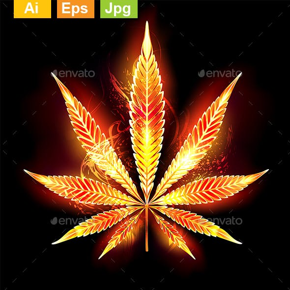 Cannabis Fire Leaf