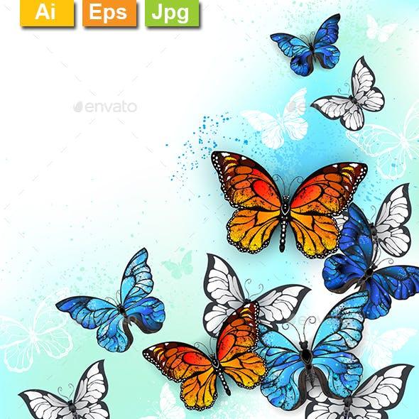 Flock of Multicolor Butterflies