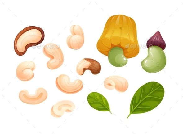 Cashew Set Different Rotations Raw and Hulled - Food Objects