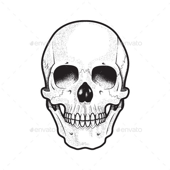 Black and White Human Skull Vector Art
