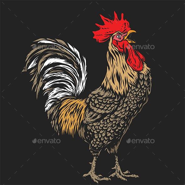 Rooster Vector Art