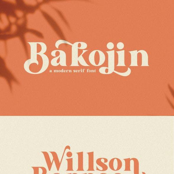 Bakojin//Modern Serif Font