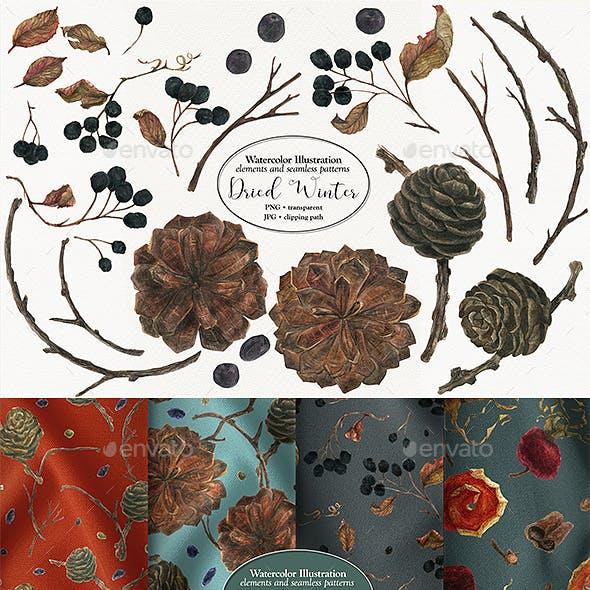 Dried Winter Volume 2