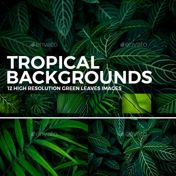 12 Tropical Green Leaves Backgrounds