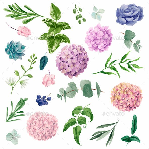 Watercolor Vector Set of Flowers and Leaves