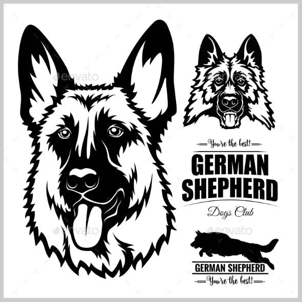 Shepherd Dog Portrait Vector Illustration