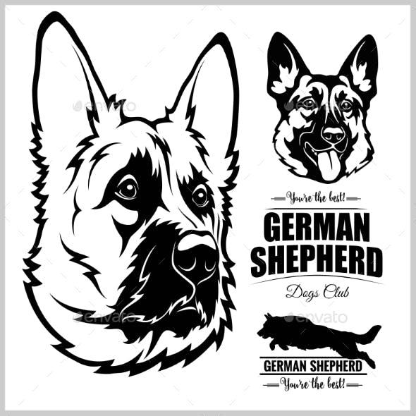 Shepherd Dog Portrait - Vector Illustration