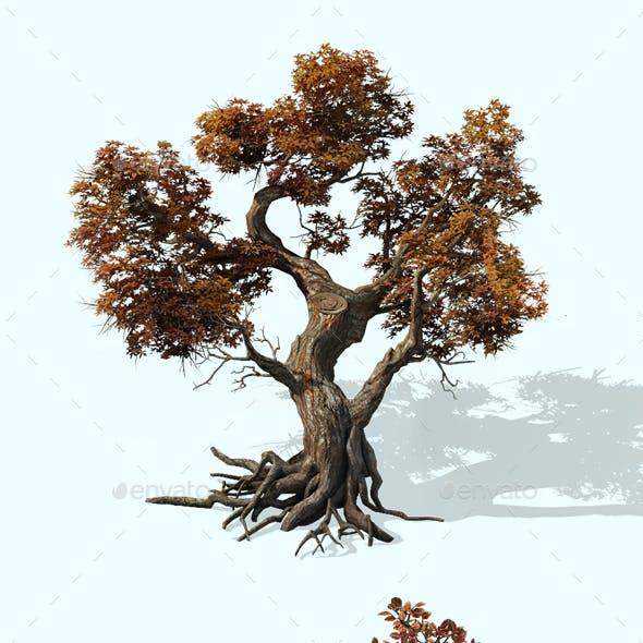 2.5D Oak Maple Trees Environment Construction Kit Game Assets
