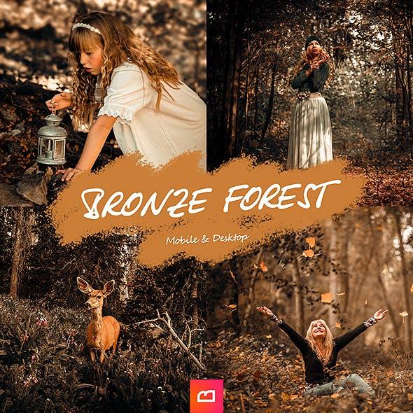 Artistic Collection - Bronze Forest Lightroom Preset (Mobile & Desktop)